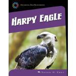 【预订】Harpy Eagle