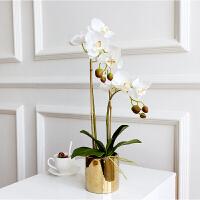 蝴蝶兰仿真花客厅摆设手感保湿欧花艺套装小盆栽摆件装饰假花