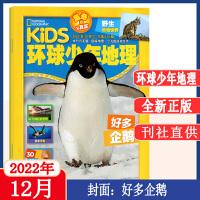 博物杂志2021年1月+2月+3月+4月 中国国家地理少年版探索自然奥秘 中国国家地理系列丛书