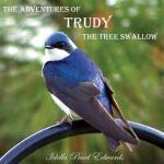 【预订】The Adventures of Trudy the Tree Swallow