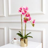 蝴蝶兰仿真花客厅摆设手感保湿北欧花艺套装小盆栽摆件装饰假花