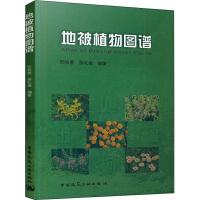 正版 地被植物图谱 阮积惠徐礼根 81个科193个属231种含变种地被植物的学名别名形态特征分布生态习性繁殖方法及其用途