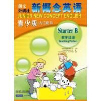 新概念英语青少版(入门级B)教学挂图