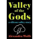 【中商原版】硅谷 英文原版 Valley of the Gods: A Silicon Valley Story Al