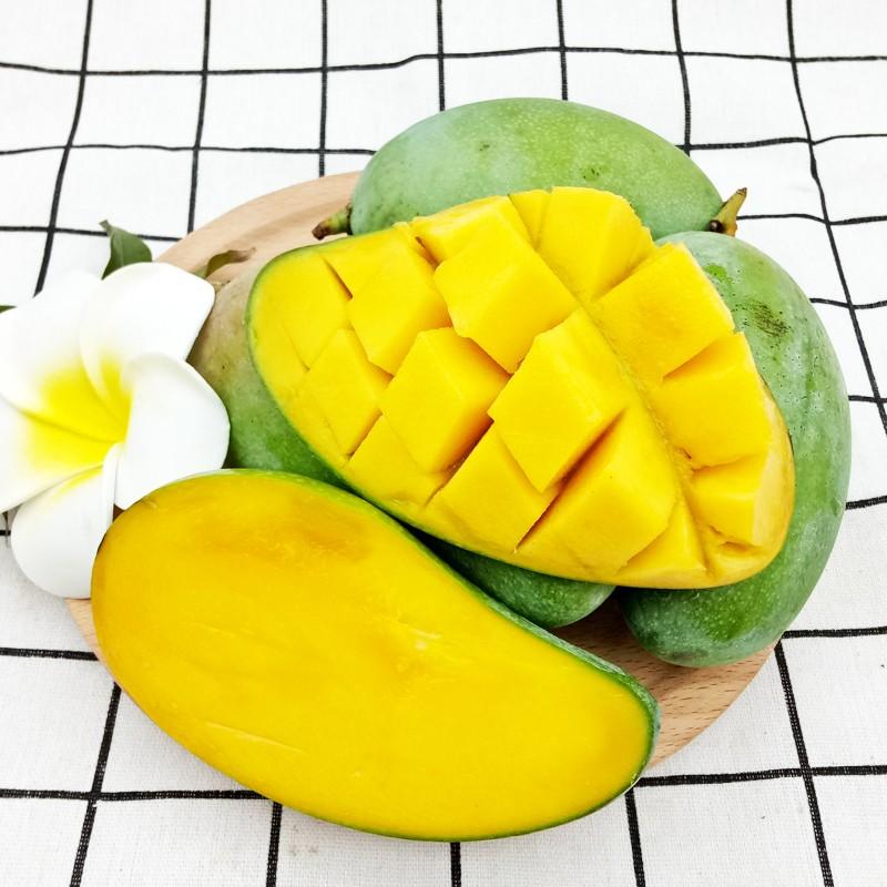 【包邮】越南青皮玉芒果一级大果5斤装 单果180-300g 新鲜水果