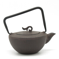 包邮 新款搪瓷泡茶生铁壶日本铸铁茶壶冲泡壶小水壶