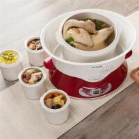 天际电炖炖锅陶瓷家用隔水炖盅全自动5人6煲汤锅大容量一锅五胆4L