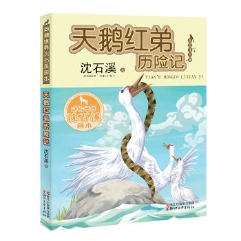 天鹅红弟历险记(动物世界沈石溪画本 美绘注音版)