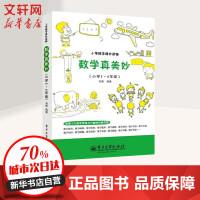 数学真美妙小学5~6年级 刘勇 编著