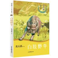 沈石溪十二生肖动物小说――白肢野牛