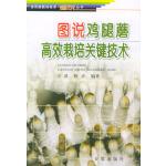图说鸡腿蘑高效栽培关键技术――食用菌栽培技术图说丛书