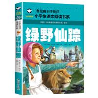 绿野仙踪 彩图注音版 小学生一二三年级语文阅读书经典儿童文学名著6 7 8 9 10岁经典文学