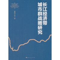 长江经济带城市群战略研究
