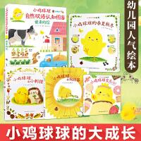 小鸡球球的大成长:全5册(新版)日本畅销超500万册四季冒险超大图鉴激荡创想力 直达心灵的童心友情 超人气小鸡球球的幼