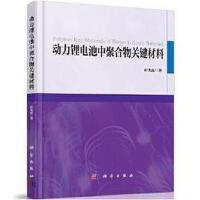 【二手旧书8成新】动力锂电池聚合物关键材料 崔光磊 科学出版社 9787030580290