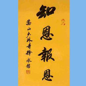 第九十十一十二届全国人大代表,少林寺方丈释永信(知恩报恩)