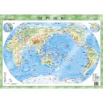 世界地形图翡翠版 4开桌面悬挂两用 PP板材 防水耐磨可擦写
