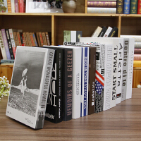 假书仿真书装饰品酒柜书架家居咖啡厅网咖摆件现代简约道具书摆设