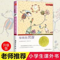 正版 国际大奖小说・升级版--绿拇指男孩 三四五六年级中小学生课外小说文学阅读读物 9-12-15岁青少年少儿童故事图