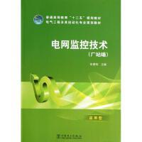 电网监控技术 中国电力出版社