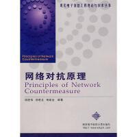 网络对抗原理//现代电子信息工程理论与技术丛书 胡建伟