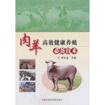 肉羊高效健康养殖必备技术