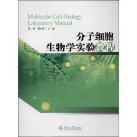 分子细胞生物学实验教程 邹奕,周天鸿 编