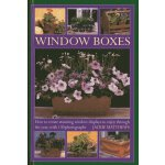 Wndow Boxes: How to Create Stunning Window Displays to Enjo