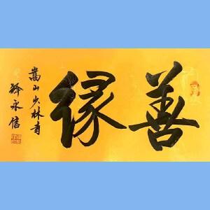 第九十十一十二届全国人大代表,少林寺方丈释永信(善缘)