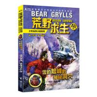 荒野求生少年生存小说拓展版08 雪豹险峰的神秘洞穴