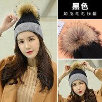 韩版帽子 女士纯色套头帽休闲针织加厚保暖大毛球毛线帽