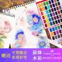 德国辉柏嘉48色固体水彩颜料套装初学者手绘36色48色水彩画颜料水彩画分装