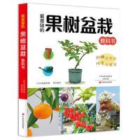 果树盆栽 9787554217665 大森直树 中原农民出版社