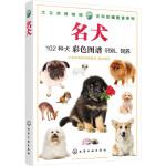 大自然博物馆·百科珍藏图鉴系列--名犬