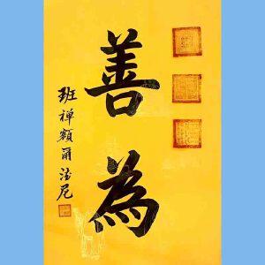 中国佛教协会副会长,中国佛教协会西藏分会第十一届理事会会长十三届全国政协委员班禅额尔德尼确吉杰布(善为