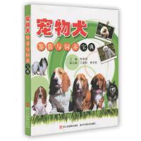 宠物犬鉴赏与饲养宝典
