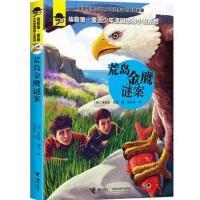 埃勒里・奎因少年逻辑思维小说系列:荒岛金鹰谜案