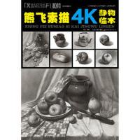 熊飞素描4K静物临本 9787539471204 熊飞 湖北美术出版社