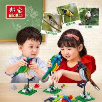 邦宝小颗粒益智拼插积木儿童6-10-12岁拼插玩具鸟类的认知5123