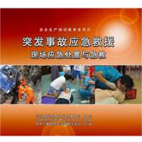 正版包票 突发事故应急救援现场应急处置与急救 2DVD 安全生产月光盘视频