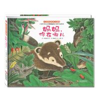 """""""小浣熊的雨林大冒险""""系列:妈妈,你在哪儿"""