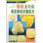 图说金针菇高效栽培关键技术――食用菌栽培技术图说丛书
