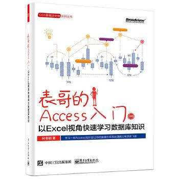 表哥的Access入门:以Excel视角快速学习数据库知识Access让你的数据分析和处理能力有质的飞越