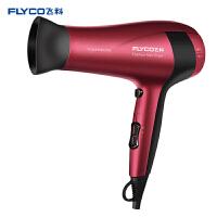 飞科(FLYCO)电吹风机家用FH6218大功率吹风筒负离子 2000W