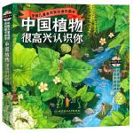 中国植物,很高兴认识你!(函套共4册)