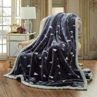 毛毯加厚双层床单拉舍尔毛毯被单双人保暖学生宿舍秋冬季盖毯婚庆 200cm*230cm 8.8斤