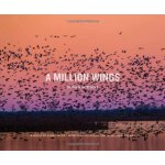 A Million Wings: A Spirited Story of the Sporting Life Alon