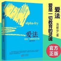 爱法 汤献华 人民东方出版社