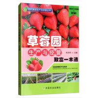 草莓园生产与经营致富一本通