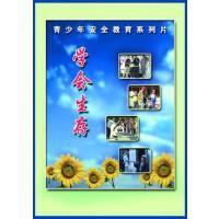 正版少年儿童安全教育系列片 学会生存 4VCD